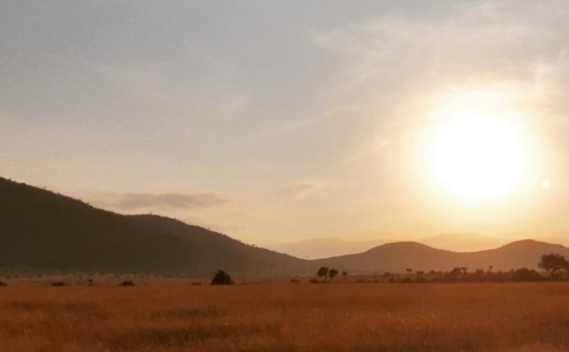 The Masai woman'sstory